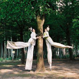 木の下でポーズを撮る女性スティルトチーム