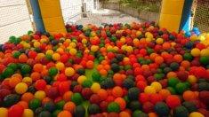エア遊具(ふわふわ)オプションのボールプール